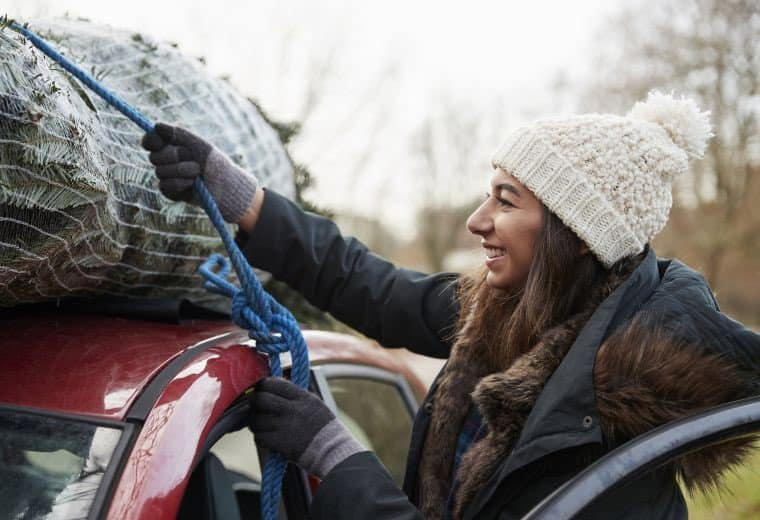 75% of drivers don't know Xmas tree transport rules-follow our guide to avoid fines